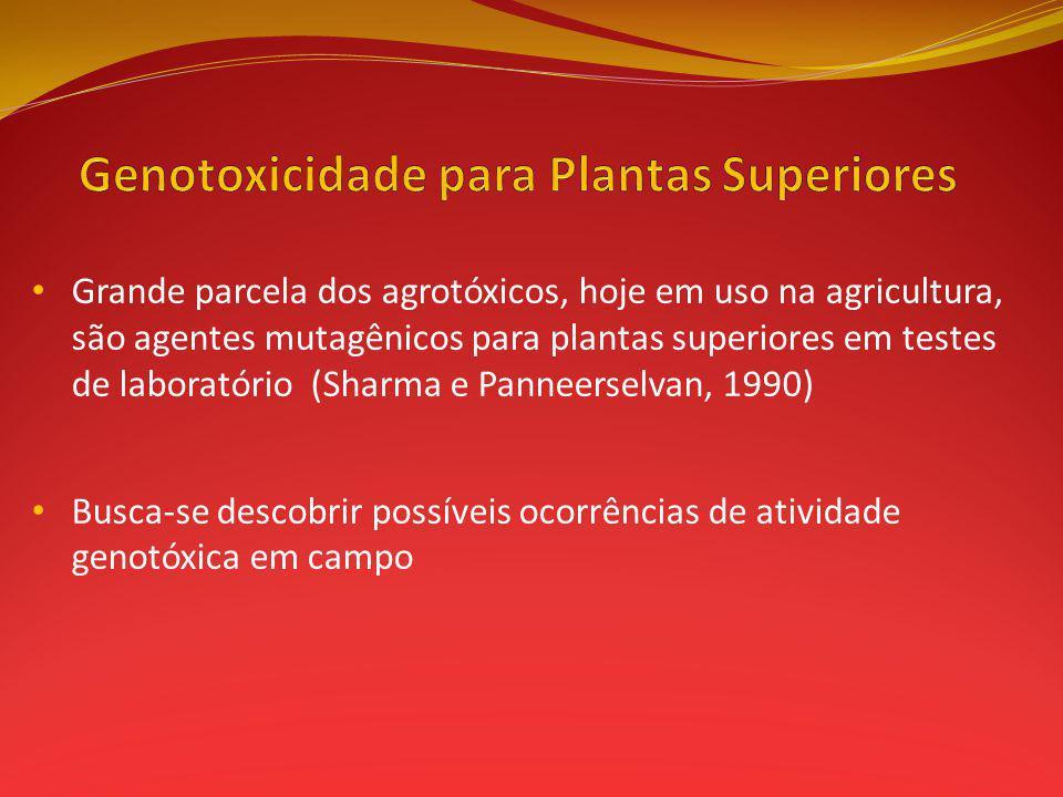 Genotoxicidade para Plantas Superiores
