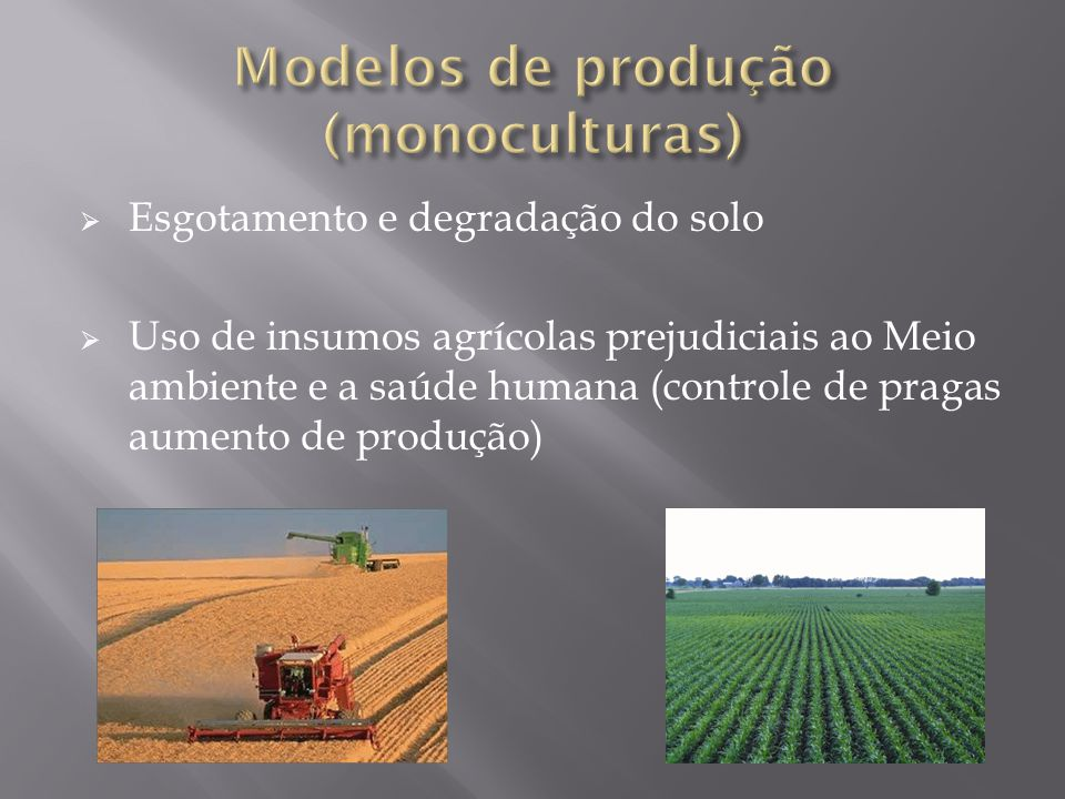 Modelos de produção (monoculturas)