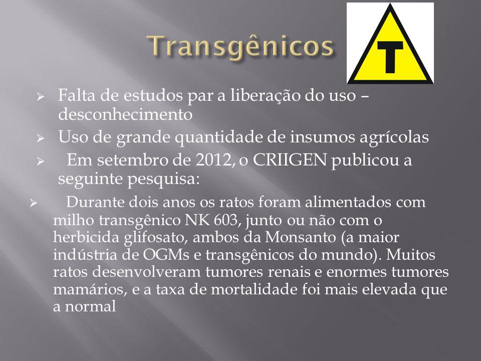 Transgênicos Falta de estudos par a liberação do uso – desconhecimento