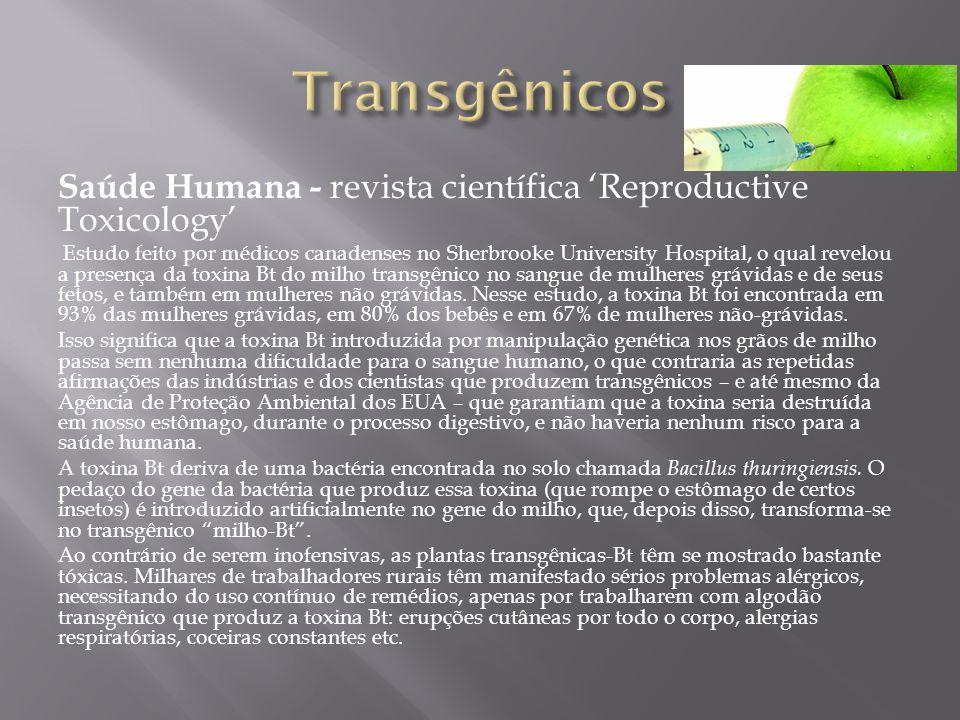 Transgênicos Saúde Humana - revista científica 'Reproductive Toxicology'