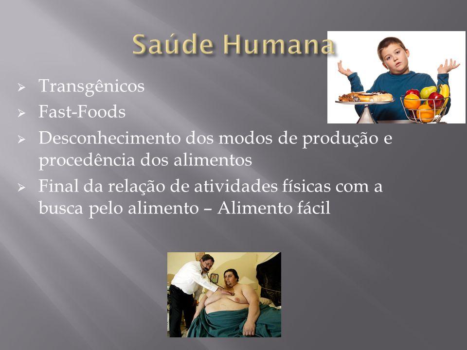 Saúde Humana Transgênicos Fast-Foods
