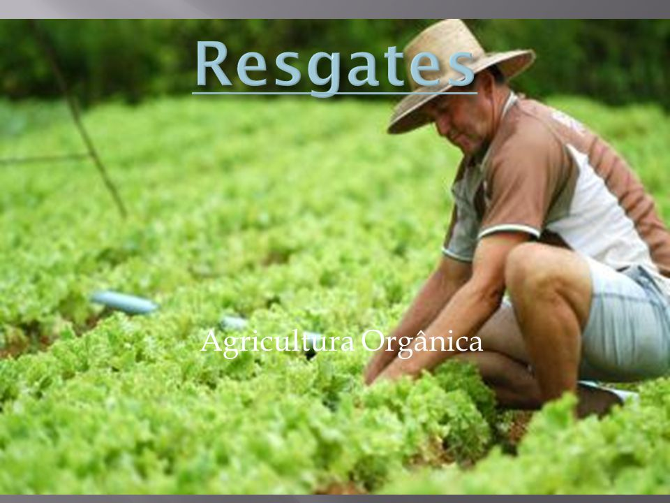 Resgates Agricultura Orgânica