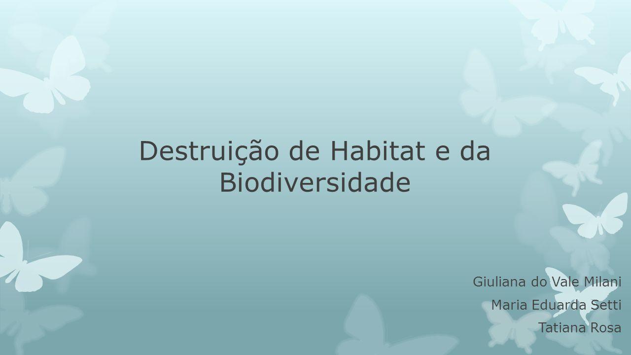 Destruição de Habitat e da Biodiversidade