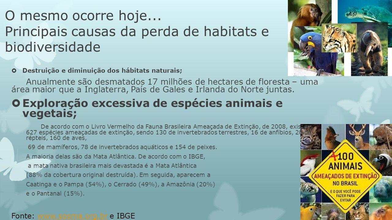 O mesmo ocorre hoje... Principais causas da perda de habitats e biodiversidade