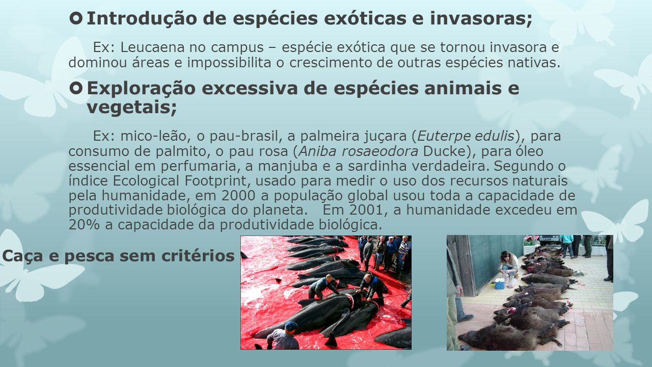 Introdução de espécies exóticas e invasoras;
