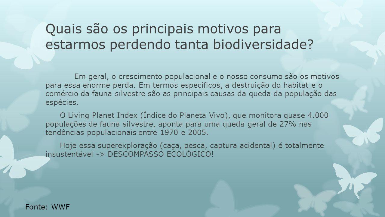Quais são os principais motivos para estarmos perdendo tanta biodiversidade