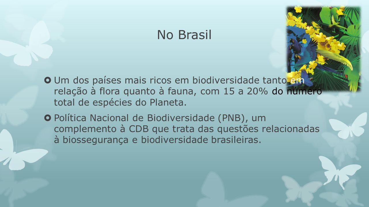 No Brasil Um dos países mais ricos em biodiversidade tanto em relação à flora quanto à fauna, com 15 a 20% do número total de espécies do Planeta.