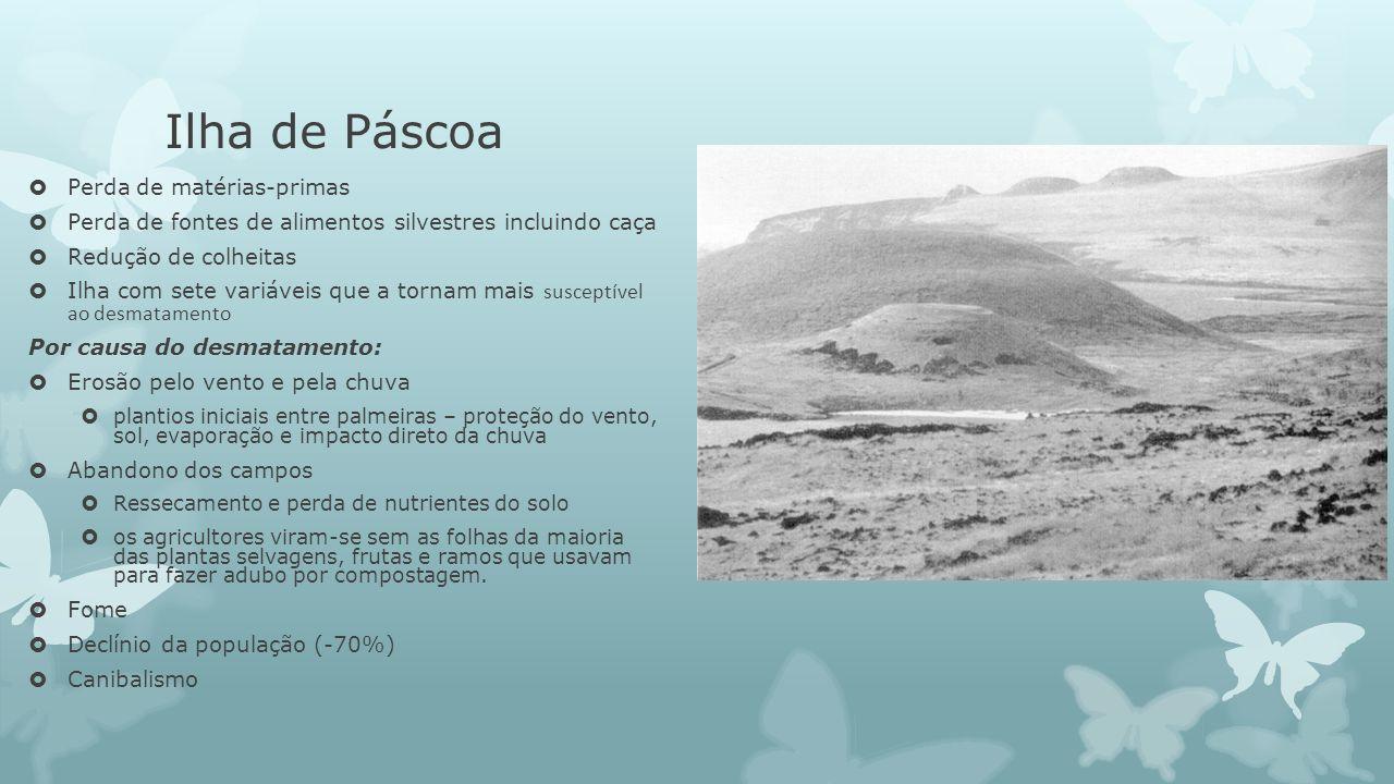 Ilha de Páscoa Perda de matérias-primas
