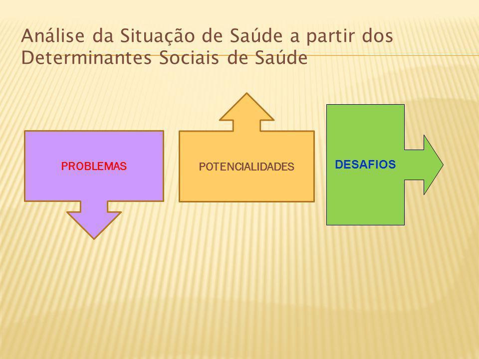 Análise da Situação de Saúde a partir dos Determinantes Sociais de Saúde