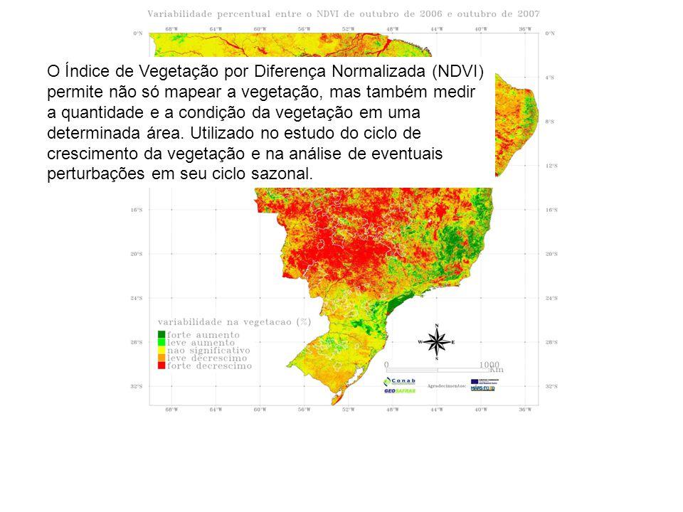 O Índice de Vegetação por Diferença Normalizada (NDVI) permite não só mapear a vegetação, mas também medir a quantidade e a condição da vegetação em uma determinada área.