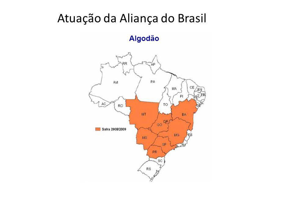 Atuação da Aliança do Brasil