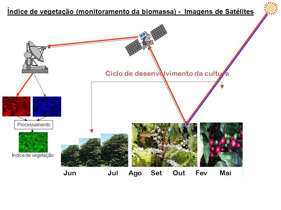 Índice de vegetação (monitoramento da biomassa) - Imagens de Satélites