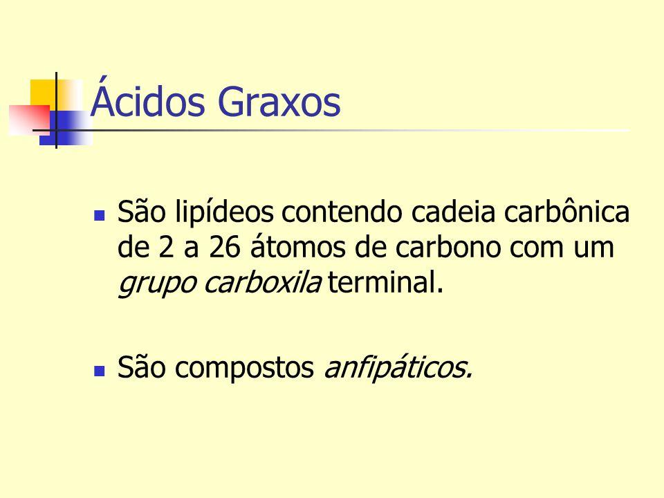 Ácidos Graxos São lipídeos contendo cadeia carbônica de 2 a 26 átomos de carbono com um grupo carboxila terminal.