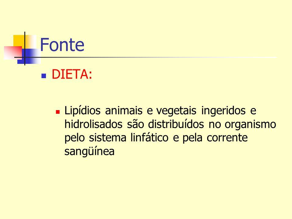 Fonte DIETA: Lipídios animais e vegetais ingeridos e hidrolisados são distribuídos no organismo pelo sistema linfático e pela corrente sangüínea.