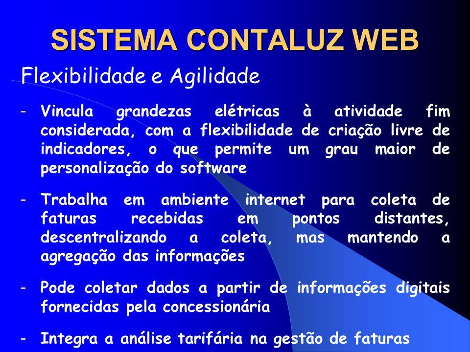 SISTEMA CONTALUZ WEB Flexibilidade e Agilidade