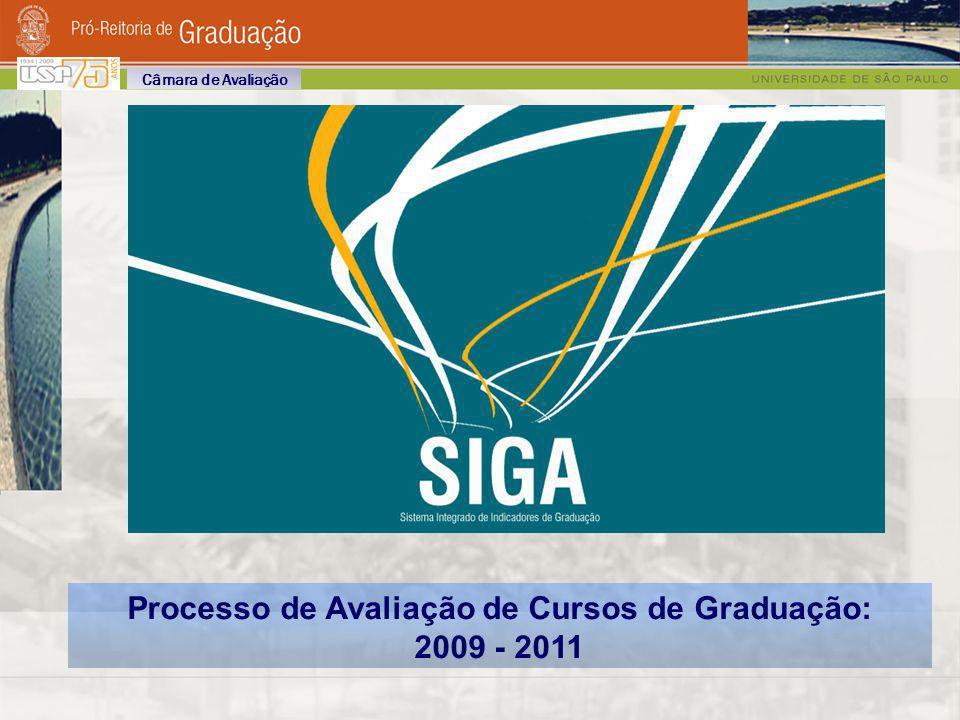 Processo de Avaliação de Cursos de Graduação: