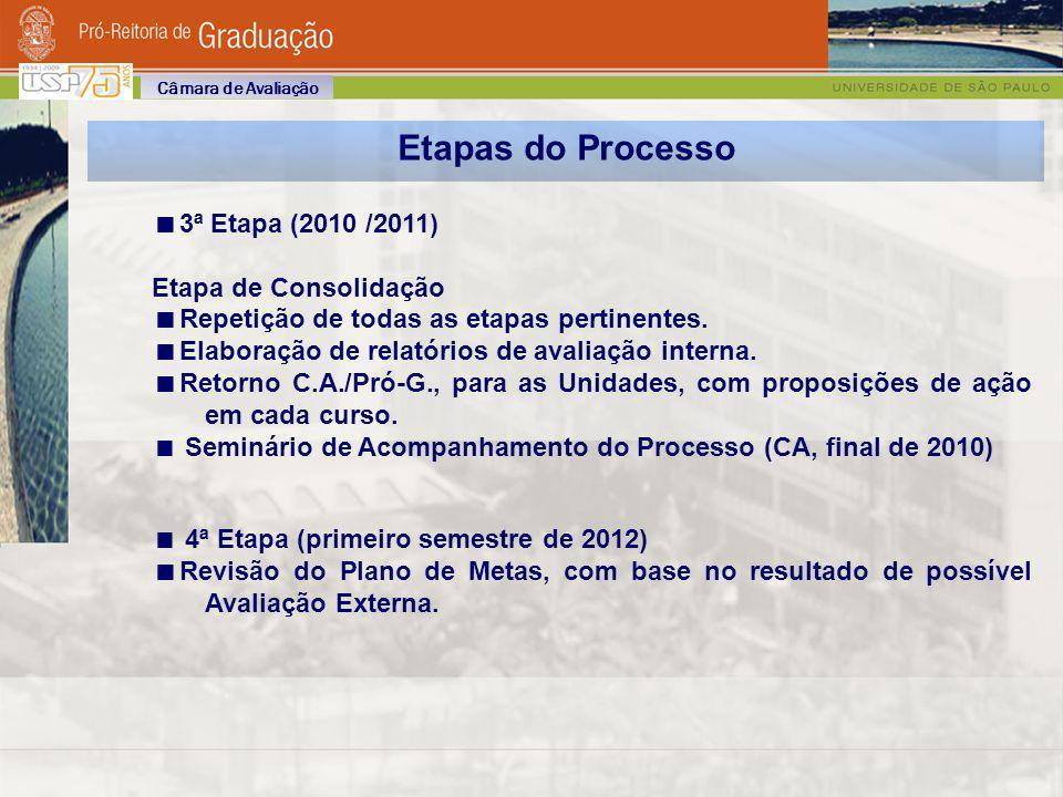 Etapas do Processo 3ª Etapa (2010 /2011) Etapa de Consolidação