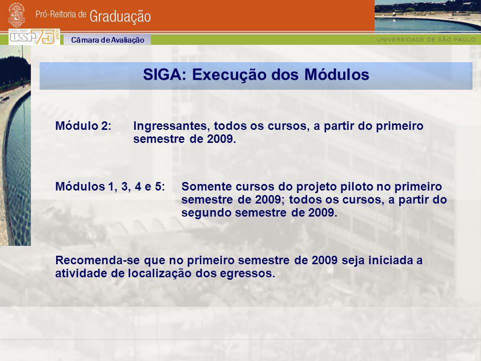 SIGA: Execução dos Módulos