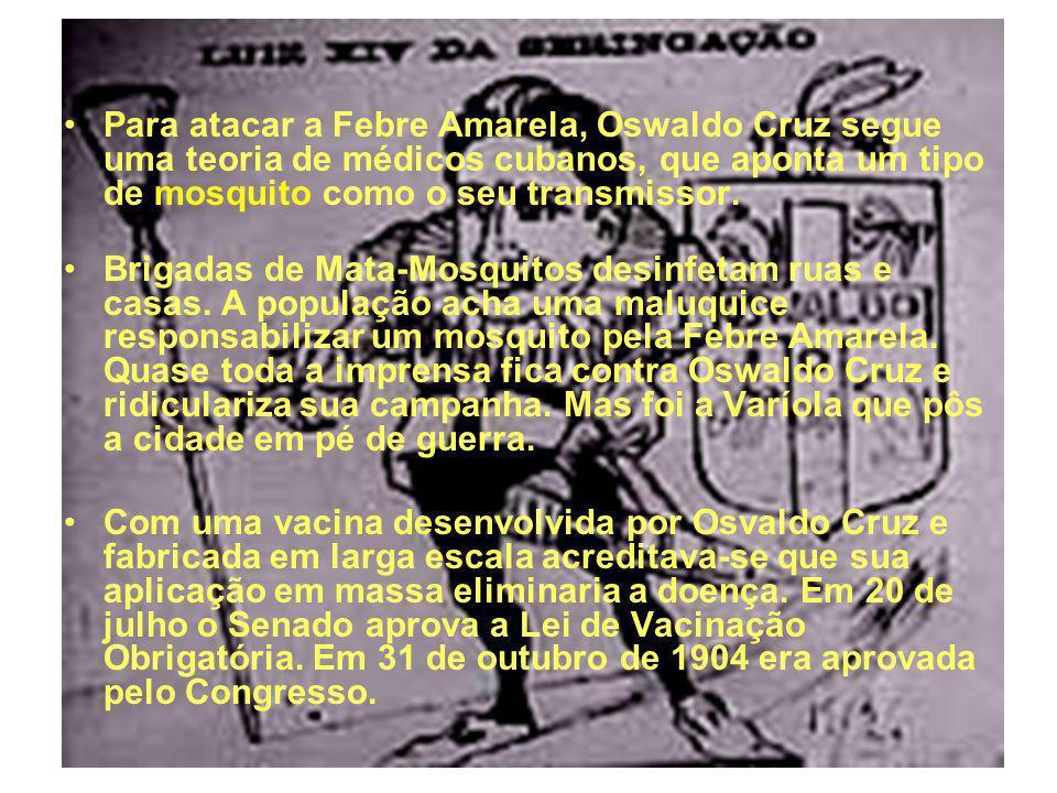 Para atacar a Febre Amarela, Oswaldo Cruz segue uma teoria de médicos cubanos, que aponta um tipo de mosquito como o seu transmissor.
