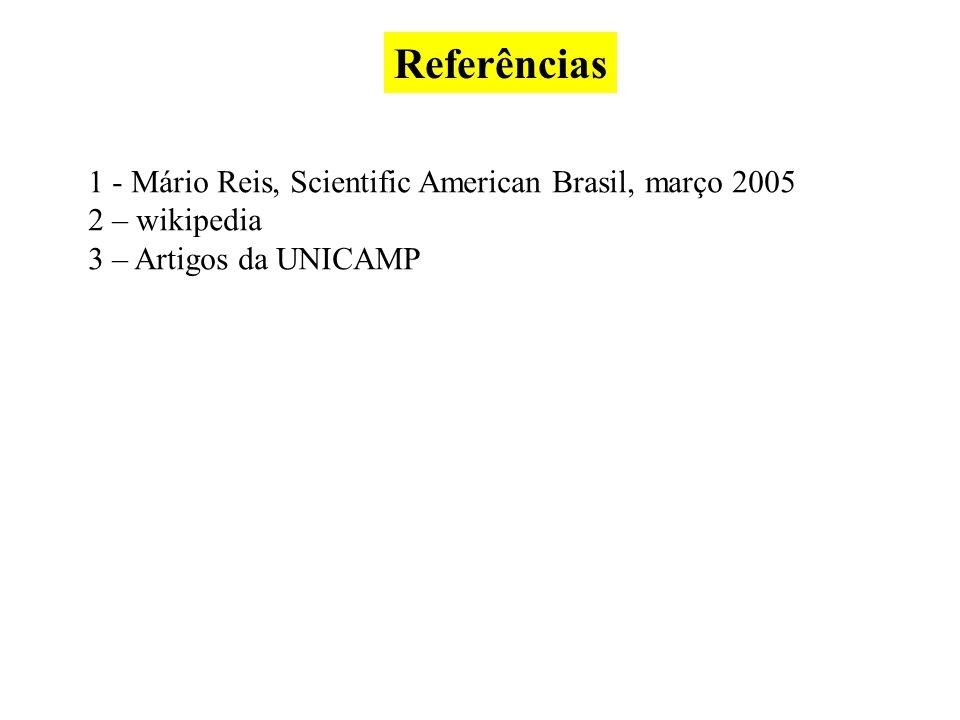 Referências 1 - Mário Reis, Scientific American Brasil, março 2005