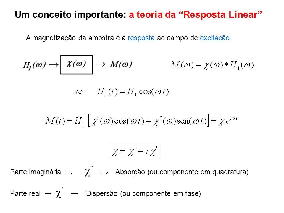 Um conceito importante: a teoria da Resposta Linear
