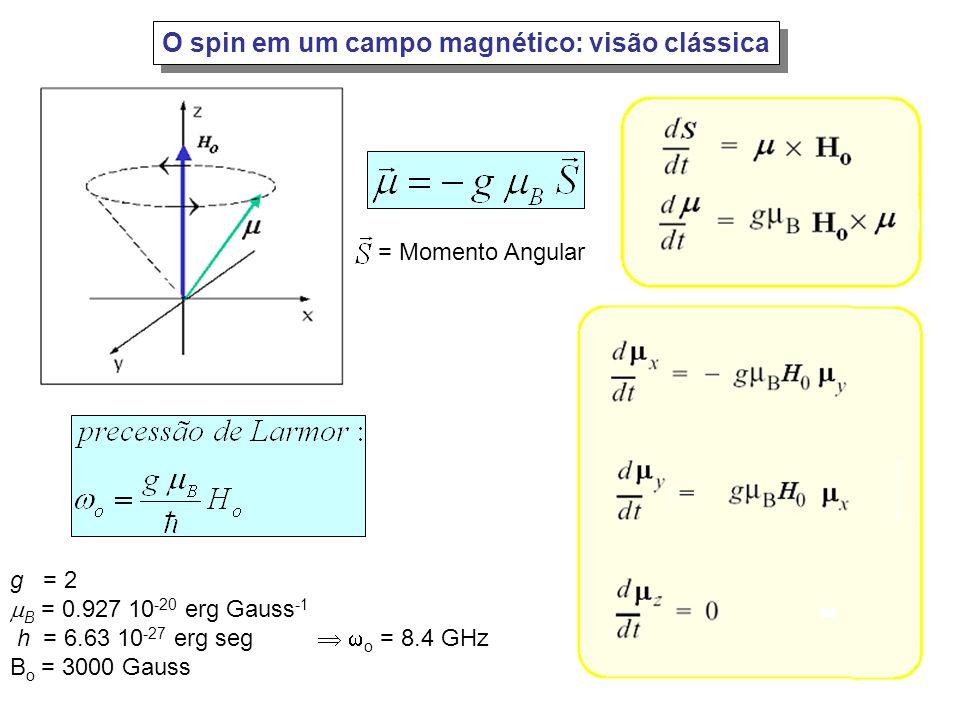 O spin em um campo magnético: visão clássica