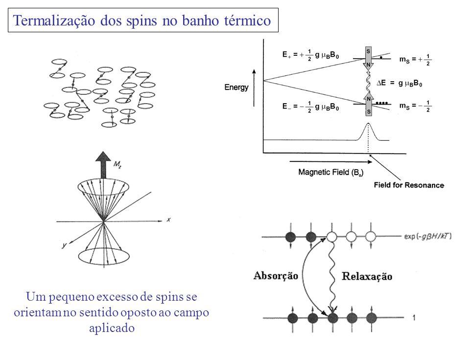 Termalização dos spins no banho térmico