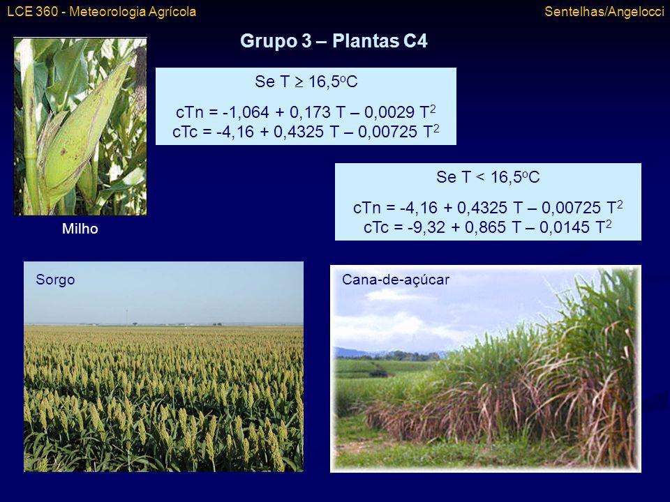Grupo 3 – Plantas C4 Se T  16,5oC