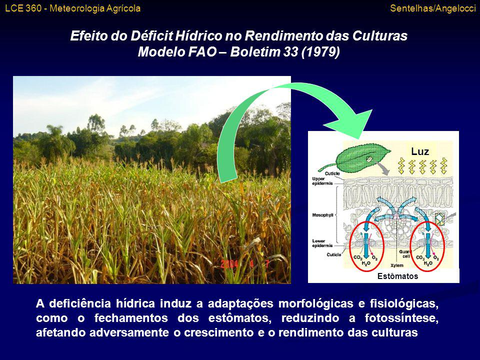 Efeito do Déficit Hídrico no Rendimento das Culturas
