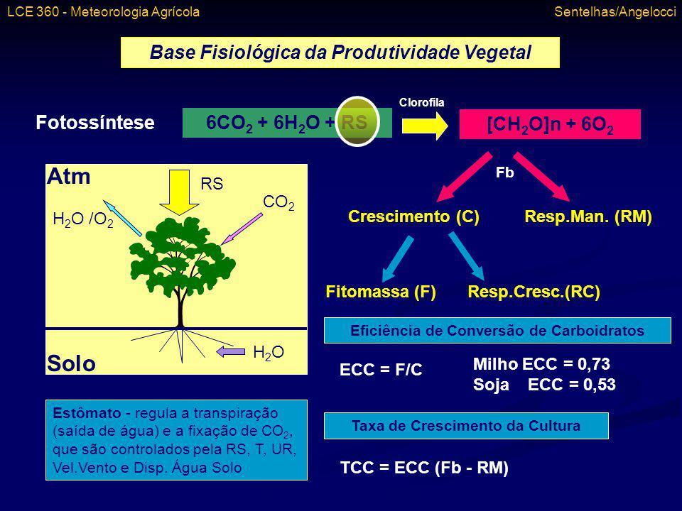 Atm Solo Base Fisiológica da Produtividade Vegetal Fotossíntese