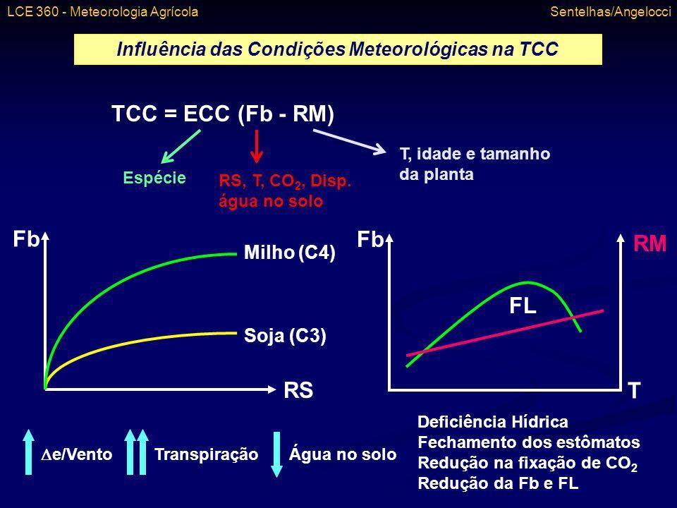 Influência das Condições Meteorológicas na TCC
