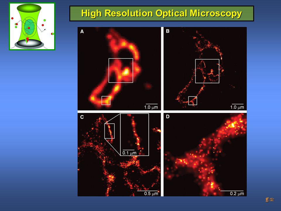 High Resolution Optical Microscopy