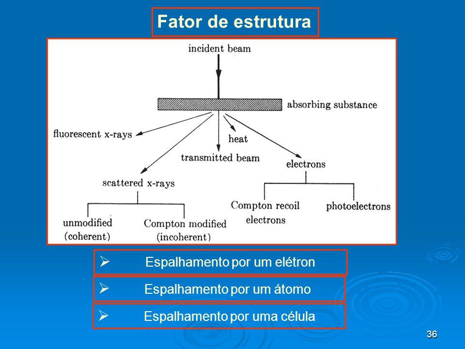 Fator de estrutura Espalhamento por um elétron