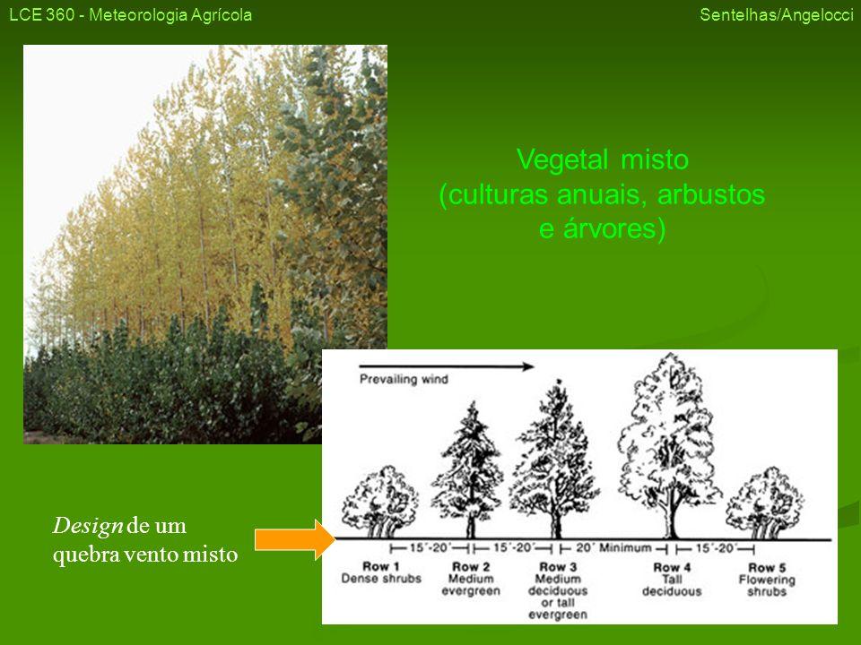 Vegetal misto (culturas anuais, arbustos e árvores)