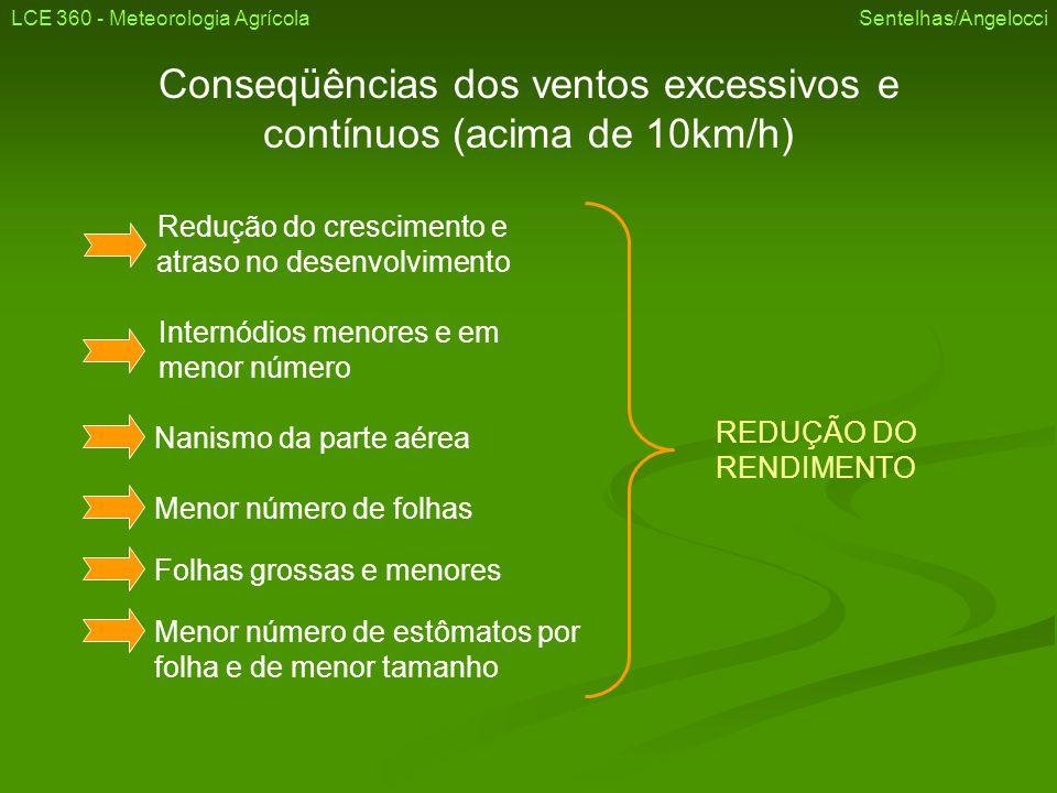 Conseqüências dos ventos excessivos e contínuos (acima de 10km/h)