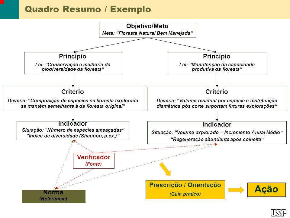 Quadro Resumo / Exemplo