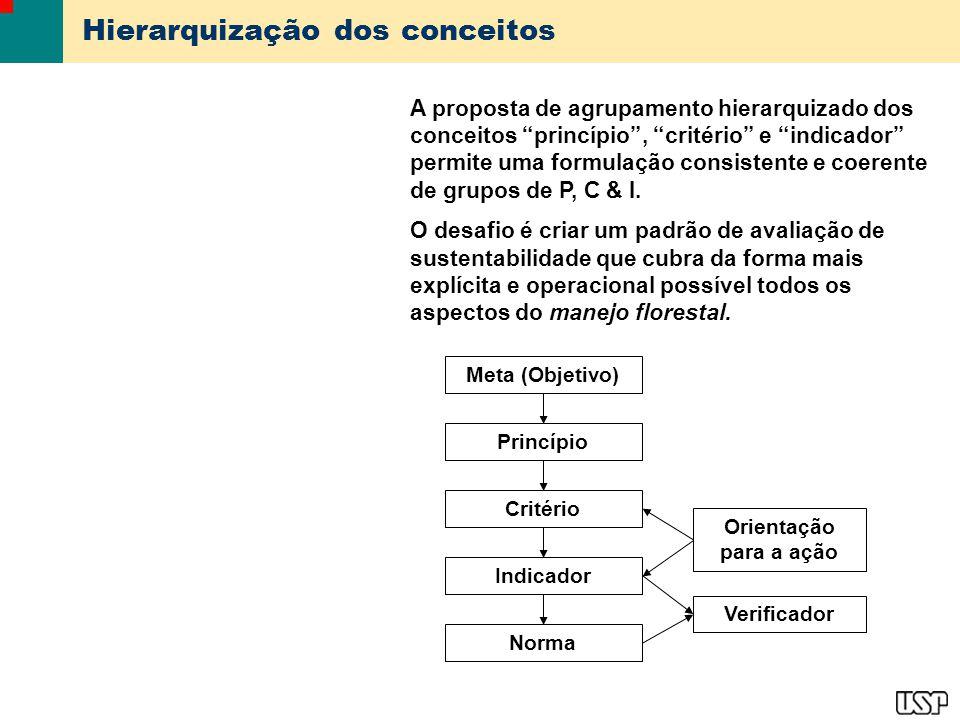 Hierarquização dos conceitos
