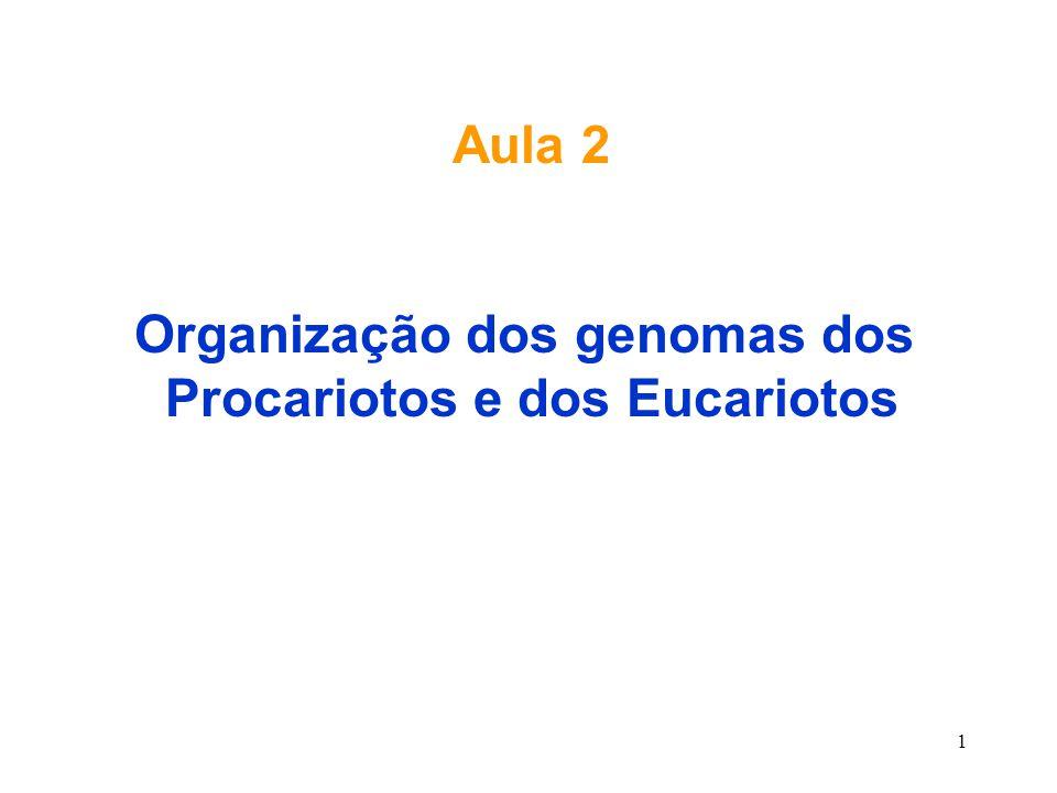 Organização dos genomas dos Procariotos e dos Eucariotos