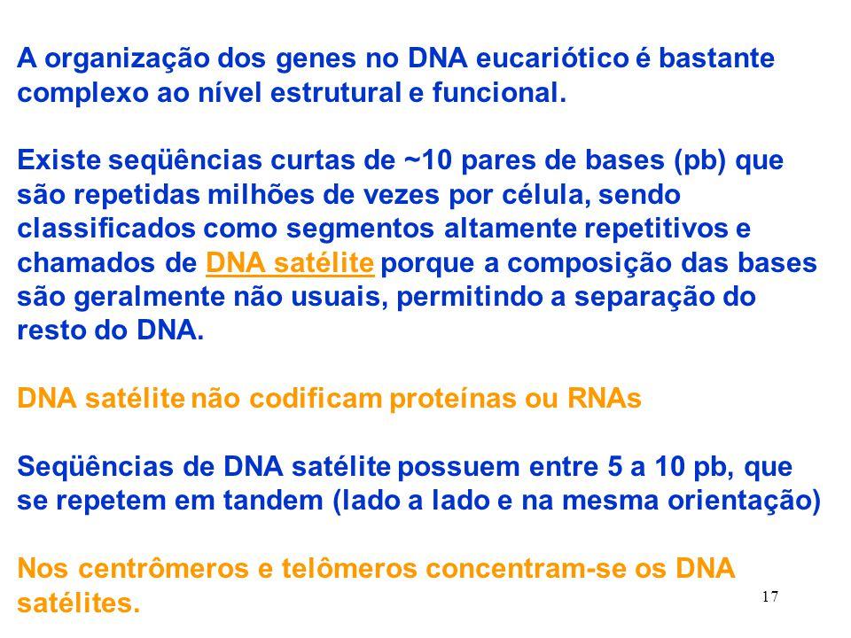 A organização dos genes no DNA eucariótico é bastante