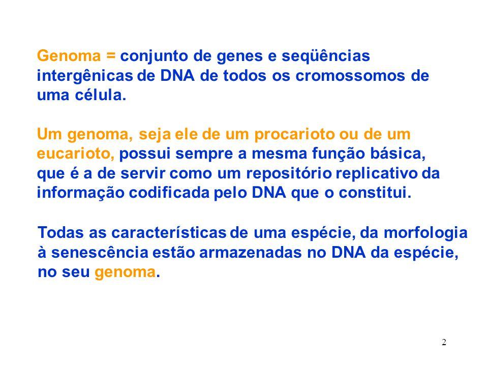 Genoma = conjunto de genes e seqüências intergênicas de DNA de todos os cromossomos de uma célula.