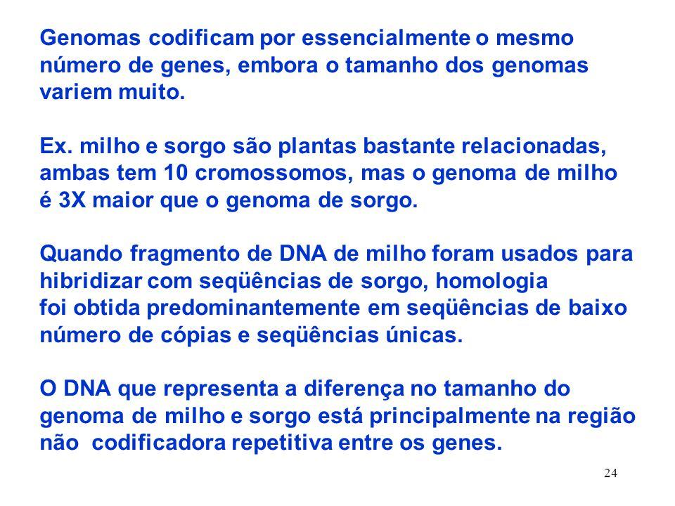 Genomas codificam por essencialmente o mesmo