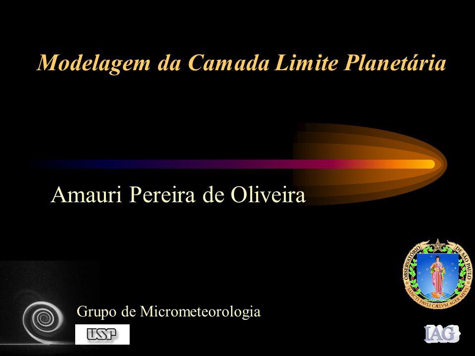 Modelagem da Camada Limite Planetária