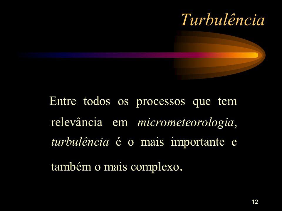 Turbulência Entre todos os processos que tem relevância em micrometeorologia, turbulência é o mais importante e também o mais complexo.