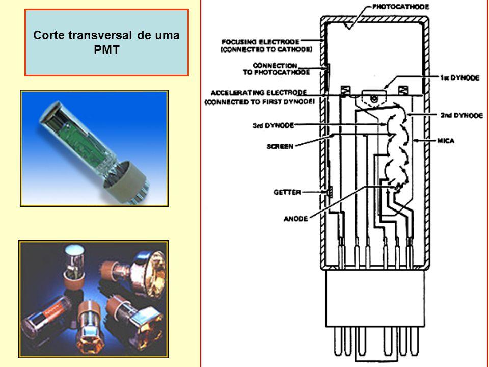 Corte transversal de uma PMT