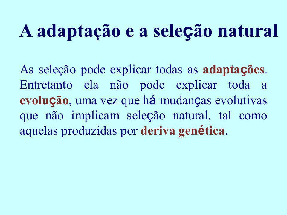 A adaptação e a seleção natural