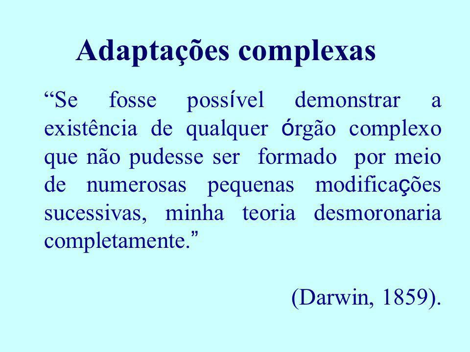 Adaptações complexas