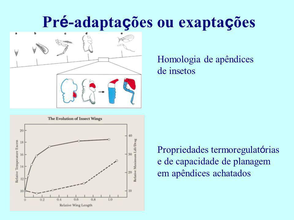 Pré-adaptações ou exaptações