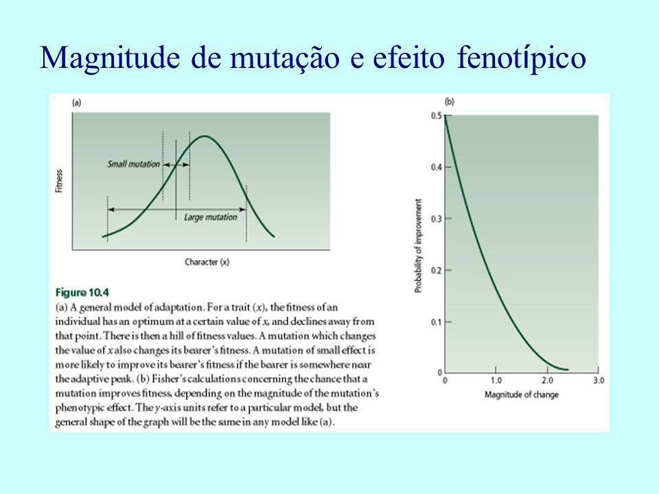 Magnitude de mutação e efeito fenotípico