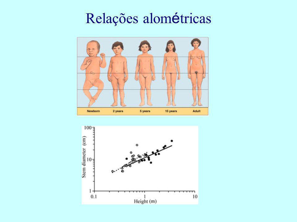 Relações alométricas