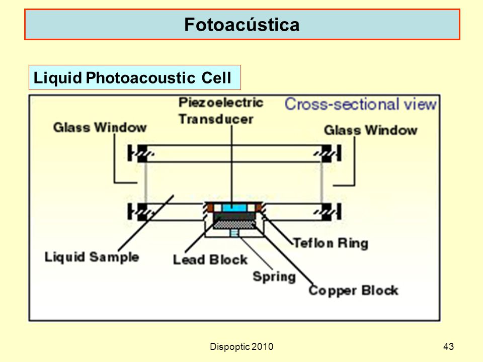 Fotoacústica Liquid Photoacoustic Cell Dispoptic 2010
